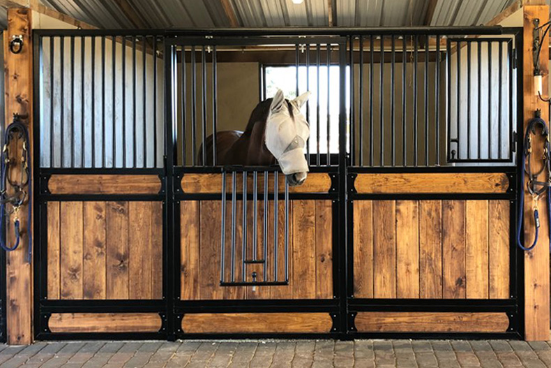 A horse with a protective mask looking out of his stall door